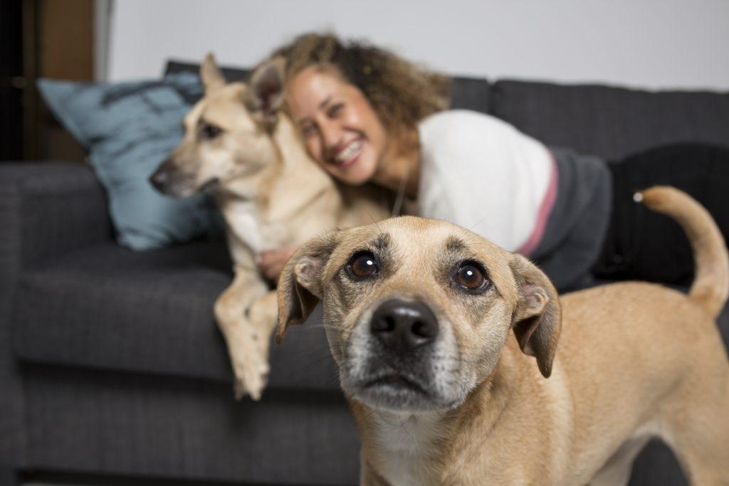 תמונה של יעל עם הכלבים