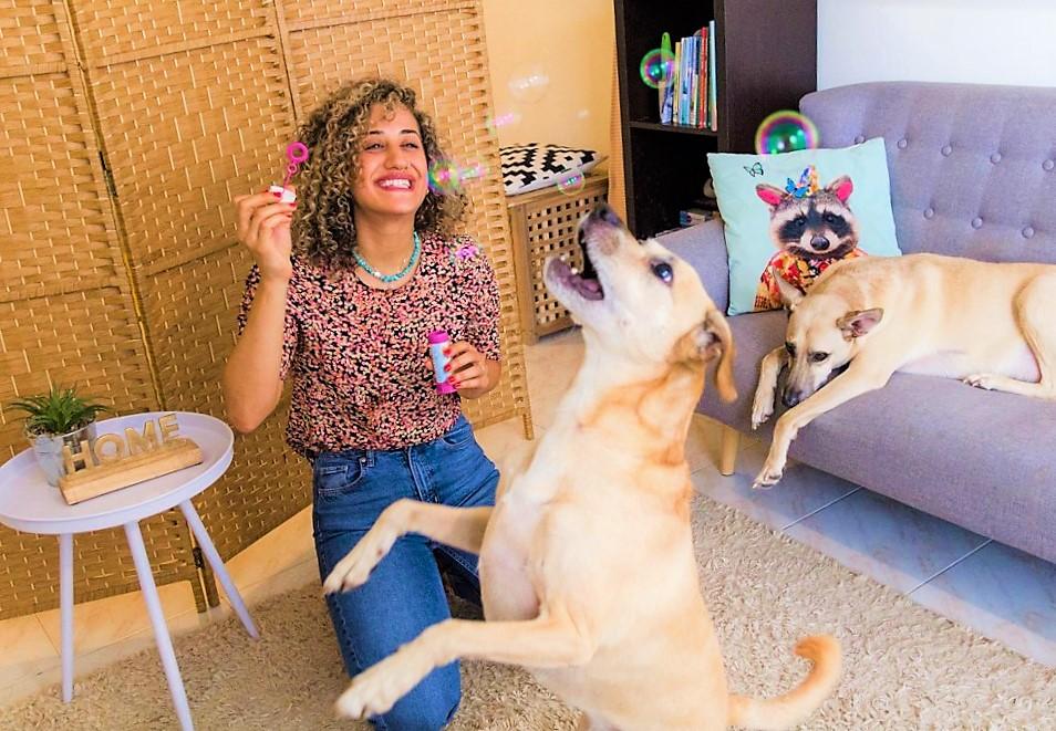 יעל והכלבים משחקים על הספה בקליניקה